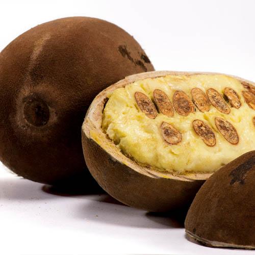 Health benefits of Cupuacu Fruit