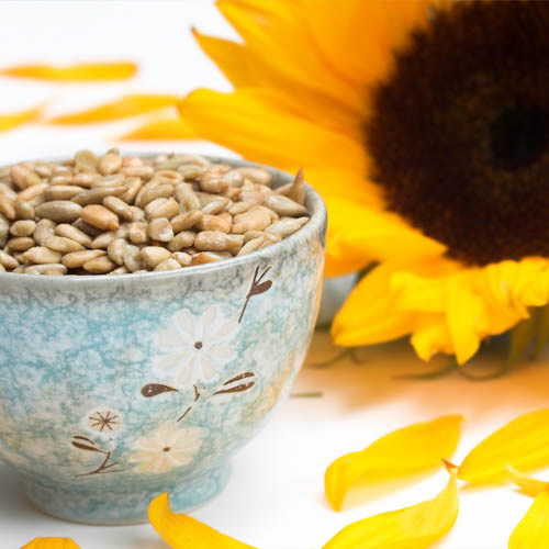What Are the Benefits of Sunflower Seeds?
