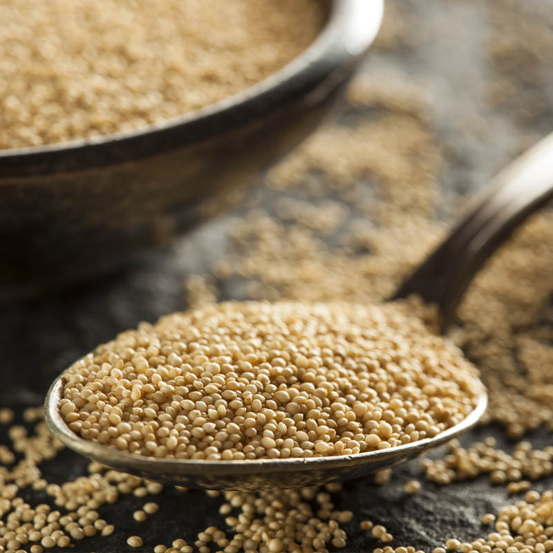 What Is Amaranth Good For?