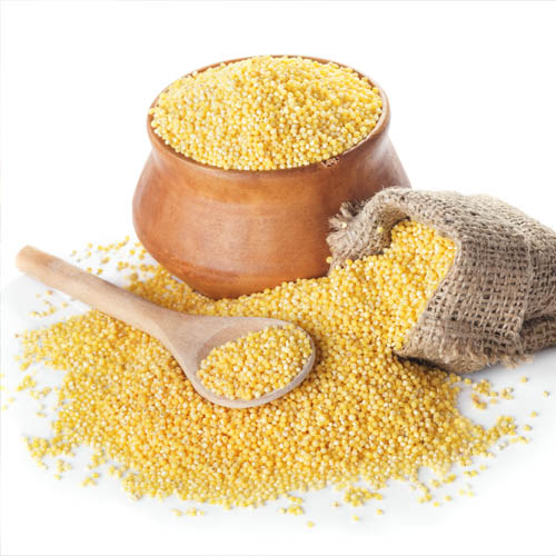 Millet Nutrition, Benefits & Uses: Your Guide to this No-Gluten, High Vitamin B & High Calcium Grain-like Seed